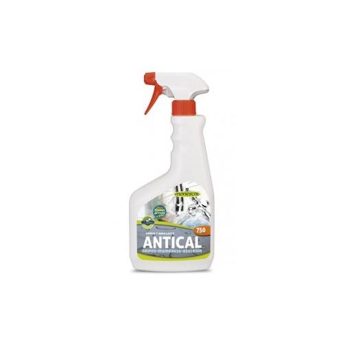 Limpiador Antical Concentrado Caselli
